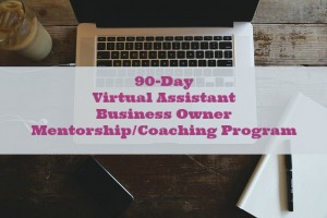 90-Day Virtual Assistant Business Owner Mentorship/Coaching Program